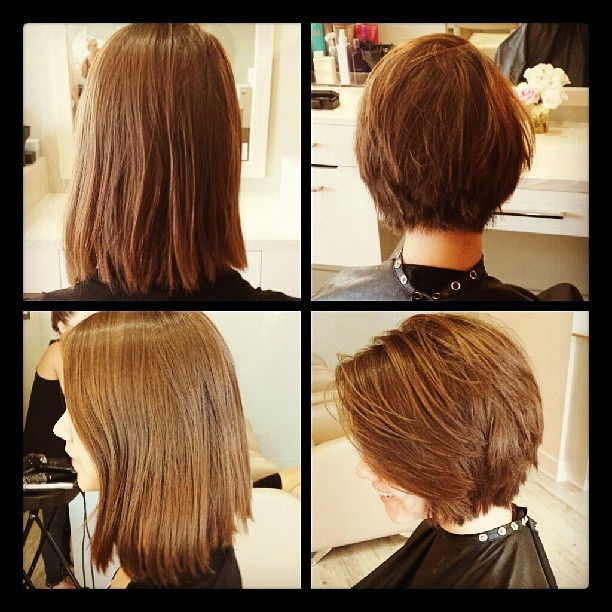 Before & After Stylist Photos